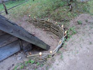 pīti-kārklu-žogi-zaru-sēta-latviešu-tradīcijas